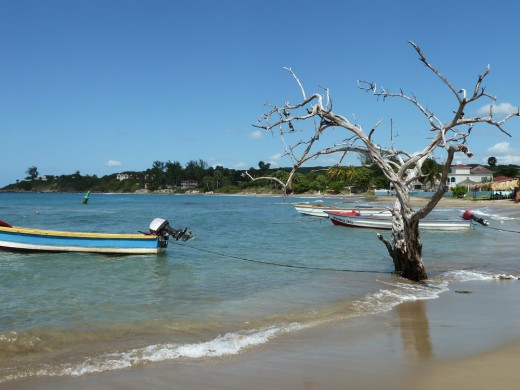 "Frenchman's Cove in Treasure Beach serves as a ""port"" for many fishermen"